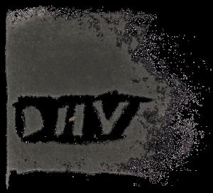 DIIV logo
